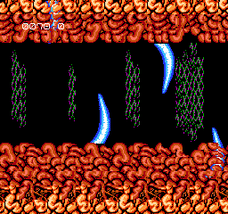 Abadox - NES - Stage 2.png
