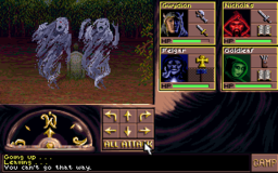 Eye of the Beholder III - DOS - Gameplay 1.png