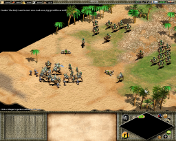 Age of Empires 2 - W32 - Saladin.png