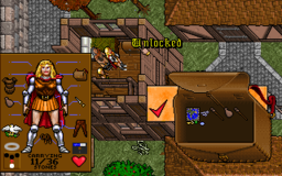 Ultima 7 - DOS - Investigating.png